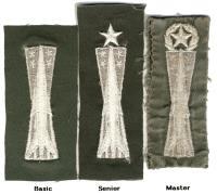 Missile Badge (Type II, Style C, Variety 5)