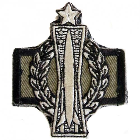 (Senior Missile Badge with Operations Designator)